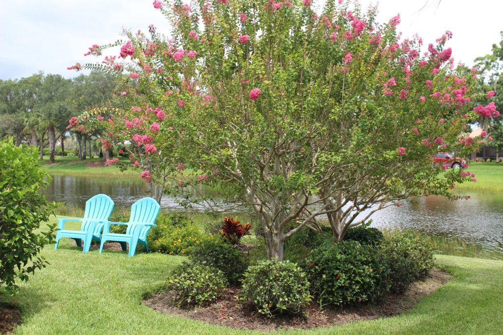 two turquoise Adirondack chairs next to a flowering bush and a lake