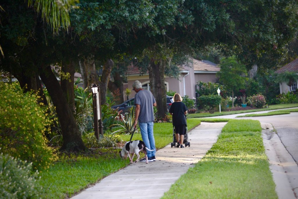 couple out walking their dog and pushing a stroller